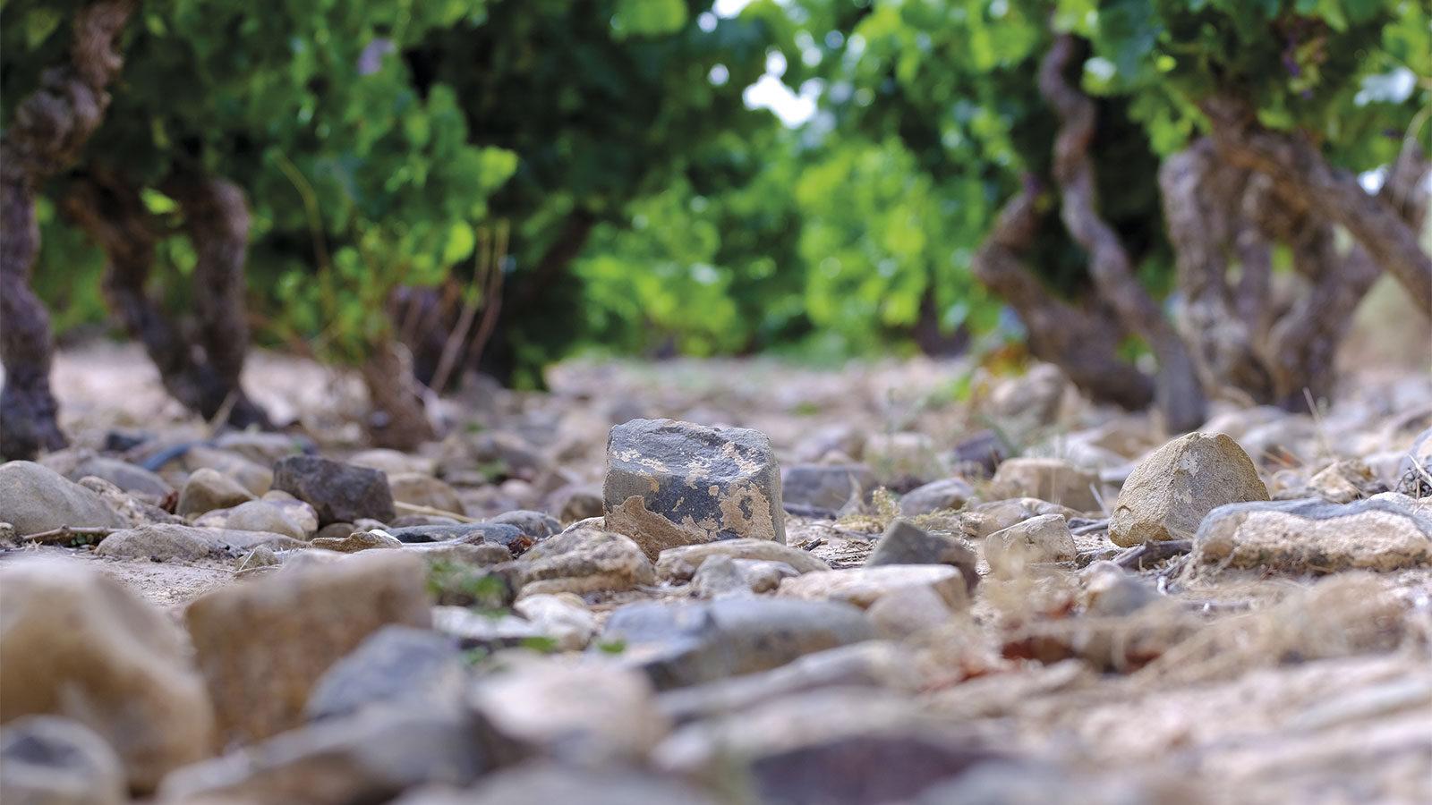 Lalinde-Monte-Yerga0002